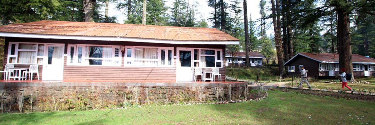 hadimba-cottage-manali2