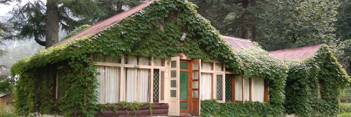 the-log-huts-manali1