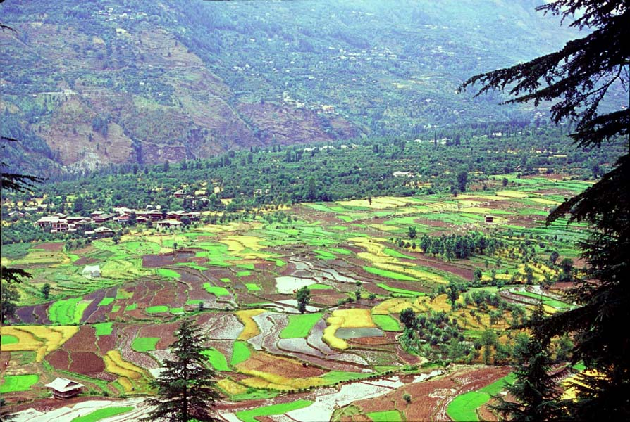 A-view-of-fields-from-Castle-Naggar